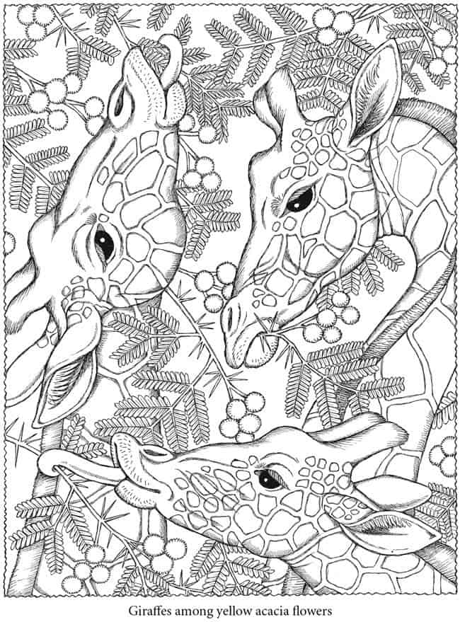 Free Downloadable Coloring To Relax Your Brain